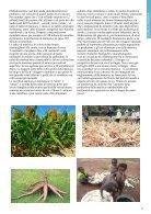 Ecoideare Luglio Agosto N24 - Page 7