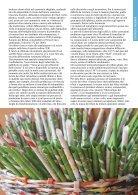 Ecoideare Maggio Giugno N23 - Page 7