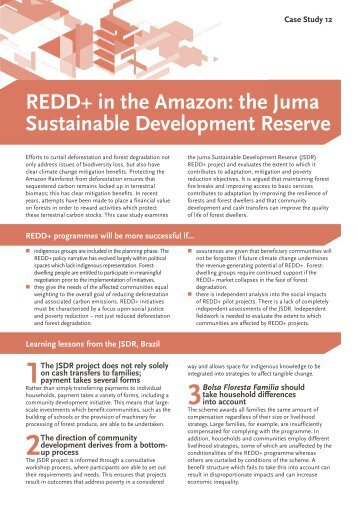 REDD+ in the Amazon: the Juma Sustainable Development Reserve