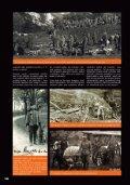 Čtyřnozí kamarádi a spolubojovníci - Page 2