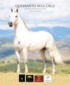 Revista Marcha News XXXIII - Page 5