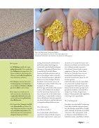 Lupine-die heimische Eiweißquelle - Seite 3