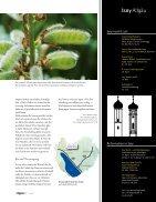 Lupine-die heimische Eiweißquelle - Seite 4