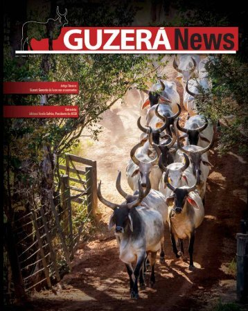 Revista Marcha News Guzera