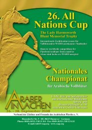 championat - All Nations Cup