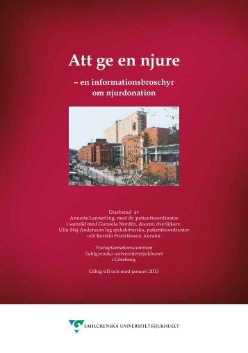 Att ge en njure - Sahlgrenska Universitetssjukhuset