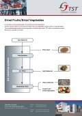 Dried Fruits/Dried Vegetables - TrennSo-Technik - Page 2