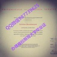 Q /Wechat 987739625University of Glasgow diploma,fake diploma transcript bachelor degree master degree,certificate