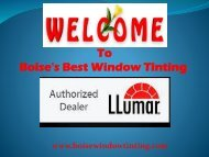 Best Window Tinting in Boise|Boise Window Tinting
