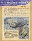 Fiches Faune Bord de Mer Pindaï - Page 3