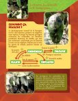 Prendre le maquis, fiches faune - Page 4