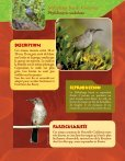 Prendre le maquis, fiches faune - Page 6