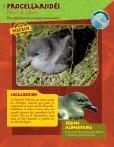 Prendre le maquis, fiches faune - Page 7