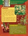 Prendre le maquis, fiches flore - Page 2