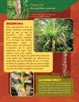 Prendre le maquis, fiches flore - Page 6