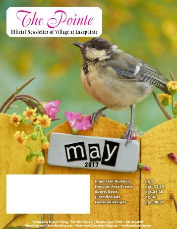 Villages at Lakepointe May 2017