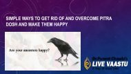 Simple ways to get rid of and overcome Pitra dosh and make them happy