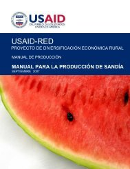 Manual para la produccion de Sandia USAID