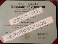 办理辛辛那提大学毕业证Q微信987739625辛辛那提大学文凭证书university of cincinnati diploma