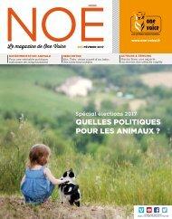 Noé 85