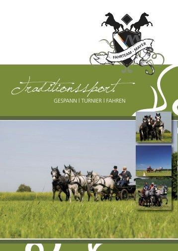 fahrteam - mayer - Mayer Dachdecker GmbH