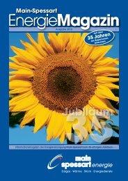 MainSpessart Energie-Magazin Ausgabe 2010 (pdf | 5,02