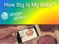 How Big Is My Baby?