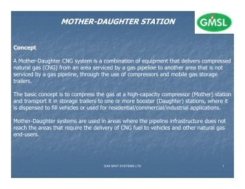 MOTHER-DAUGHTER STATION - Gas Mint Systems Limited