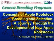 Concepts of Apple Rootstock Breeding and Selection: A Journey ...