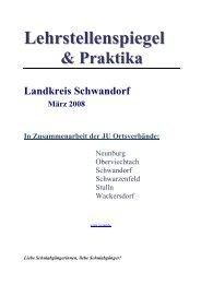 Lehrstellenspiegel & Praktika Landkreis Schwandorf März 2008 In ...