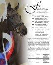 Rosentanz Fürstenball Hoftanz - HP Horses - Page 4