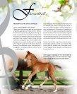 Rosentanz Fürstenball Hoftanz - HP Horses - Page 6