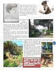 Scuola news - Page 5