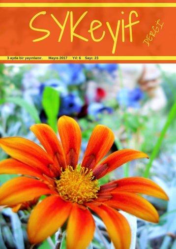 sykeyif 2017 -1 (4)