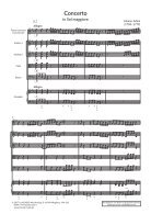 Adam_Flötenkonzert_KM_Muster_U1_ID - Page 3