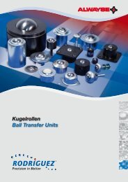 Kugelrollen Ball Transfer Units - Rodriguez