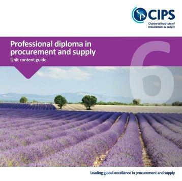 CIPS_ProfDipProcSupp_L6_UCG_32pp_210sq_0517_WEB