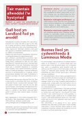 TBV Newsletter May 2017 Edition (Cymraeg) - Page 4