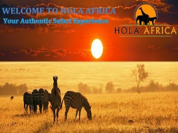 It's Time To Explore Pure Beauty Of Tanzania Tours and Safaris