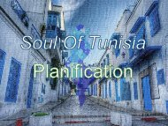Planification Soul of Tunisia