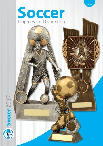 2017 Soccer Trophies for Distinction