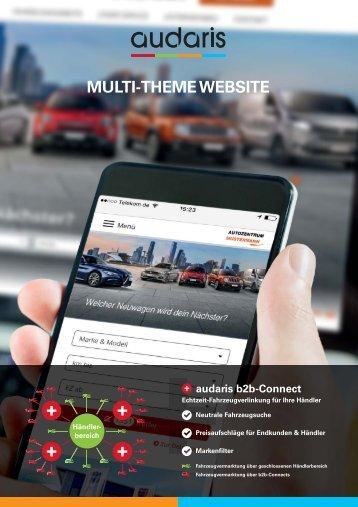 Multi-Theme Website 2017