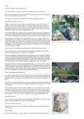 Gespräche über figurative Malerei: Ercan - Alex Winiger :: Intro - Seite 3