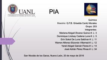 PIA_ Revista