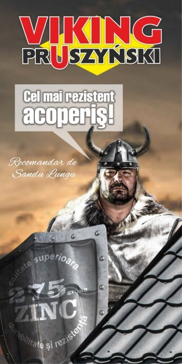 Viking Pruszyński - Tigla Metalica