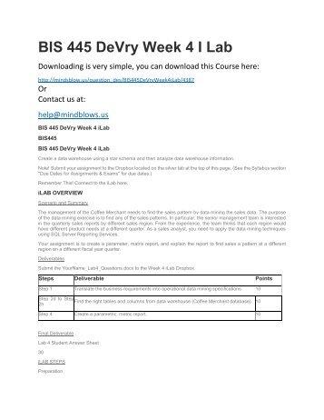 BIS 445 DeVry Week 4 iLab