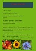 Dragon Express 3 / 2011 - Drachenfelsschule - Seite 5