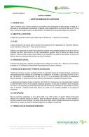 PLIEGOS DE CONDICIONES DEFINITIVOS - Page 3