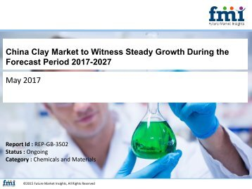 China Clay Market to Witness Steady Growth During the Forecast Period 2017-2027