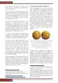 Las monedas medievales en el nuevo mundo - Page 6